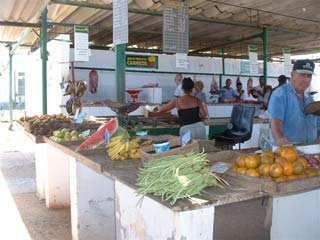 Produkte Agrarmarkt