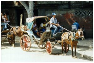 Pferdekutche in Bayamo
